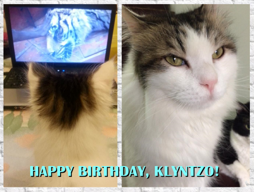 Happy Birthday Klyntzo-2016-Blog
